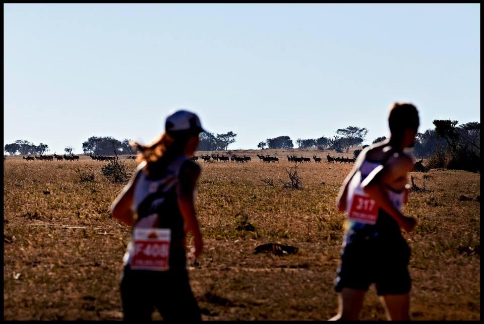 Ontdek vijf avontuurlijke marathons…