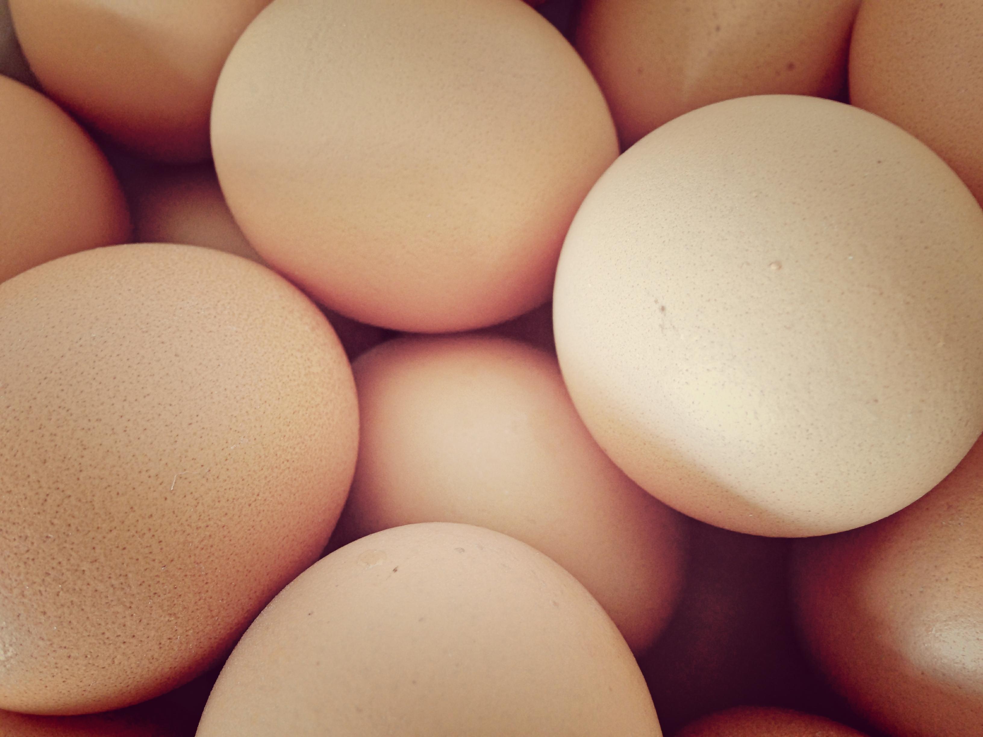 Gezond eten tijdens Pasen; eieren zijn superfoods